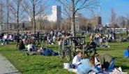 """Antwerpen wil buitenevenementen organiseren met clubbazen: """"Zuurstof geven aan jongeren én discotheekuitbaters"""""""