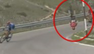 """Mohoric komt als bij wonder bijna ongeschonden uit doodsmak in Giro: """"Zelfs geen hoofdpijn"""""""