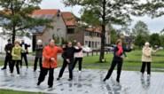 Parkparade brengt drie weekends welzijn naar parken
