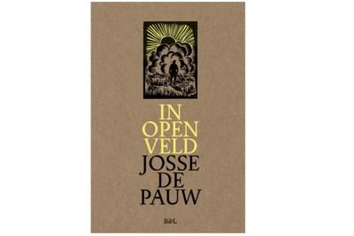 RECENSIE. 'In open veld' van Josse De Pauw: Kiemen zoeken ****