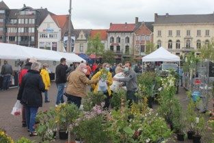 Marktplein kleurt groen