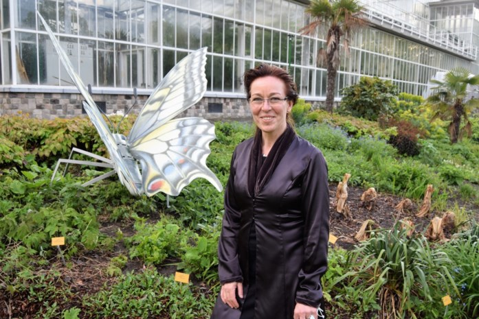 Vlinders uit Temse nu ook te spotten in de Plantentuin in Meise