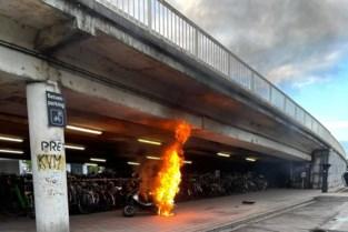 Scooter uitgebrand onder brug Postzegellaan: politie stelt onderzoek in