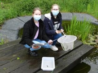 Leerlingen bestuderen dieren en planten