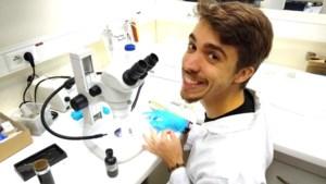Vlaming (28) ontdekt alternatief voor stroomdraadjes in onze smartphone: een bacterie uit de modder van uw vijver