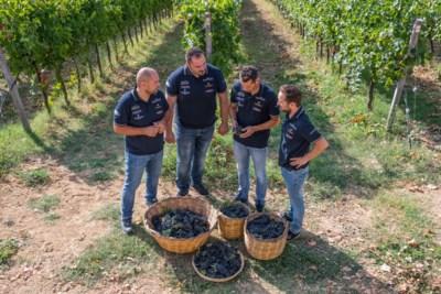 Voor de tweede keer Wijnmaker van het jaar: Fantini scoort in de wijn én in de koers