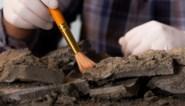 Archeologen ontdekken 3.800 jaar oude gouden ring in Duits graf
