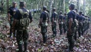 Veertien doden bij gewapende aanval in regio van Peru waar coca geteeld wordt