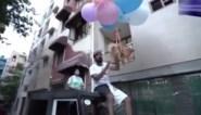 Youtuber gearresteerd na ondoordachte stunt met zijn hond en heliumballonnen