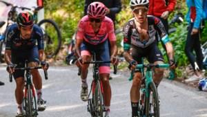 Superaanvaller doet het nu verdedigend: alleen gigantische inzinking kan Bernal nog eindzege in Giro kosten