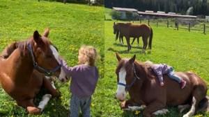 Te schattig: 3-jarig meisje is beste vrienden met haar paard en helpt hem tegen vliegen