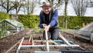 Onze groenman test 10 tuinharken: één absolute topper en één grote tegenvaller