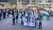 Tientallen manifestanten voor Palestina op Stadsplein in Genk