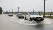 Noodtoestand uitgeroepen na zware overstromingen op zuidereiland Nieuw-Zeeland