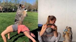 """Trouwe viervoeter houdt haar baasje fit: """"Trainen met een hond is veel leuker"""""""