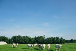 Kandidaten gezocht voor eerste landbouwprijs