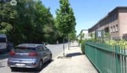 """Groen: """"Oosterweel brengt meer beton maar minder bos"""""""