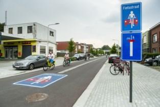 Victor Heylenlei is beste fietsstraat van Antwerpen