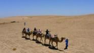 Marokko vanaf 15 juni weer toegankelijk voor reizigers