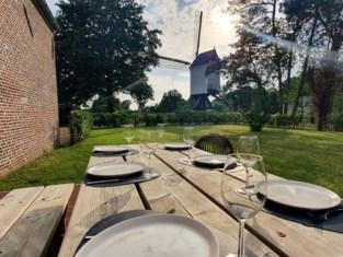 Voortaan kan je logeren in molenaarswoning met zicht op de Beddermolen