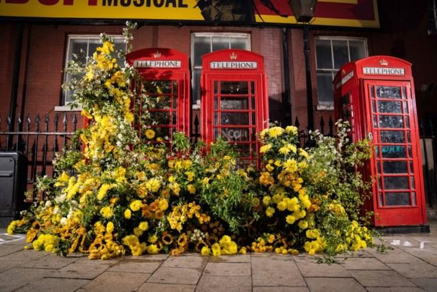 Zeg het met bloemen: Banksy van de botanische kunst fleurt Londen helemaal op