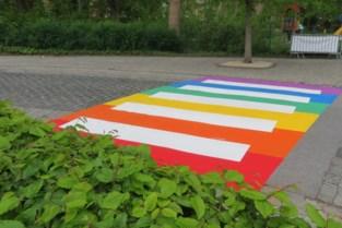 Regenboogkleuren duiken weldra op in straatbeeld