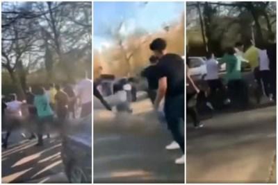 Elke zomer terroriseren Brusselse jongeren de recreatiedomeinen: bestaat er dan echt geen oplossing?