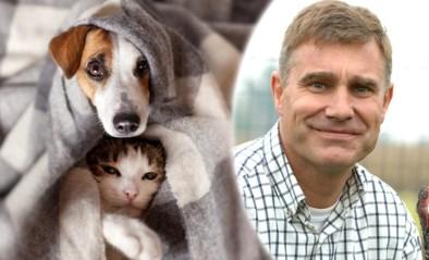 Je hond of kat voelt de bui al heel snel hangen: zo help je hen als het onweert