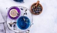 Dit magische zomerdrankje is een hit op TikTok