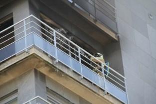 """Felle brand verwoest flat op zesde verdieping langs zeedijk: """"Ik was net beneden toen de hel losbarstte"""""""