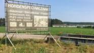 Kim Clijsters en An Lemmens (en 12.000 anderen) halen slag thuis: geen toelating voor nieuwe hondenfokkerij
