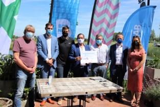 Jeugdwerkloosheid aanpakken is prioriteit in Klein-Brabant Vaartland