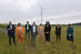 """'Windlandschap' langs expresweg bestaat twintig jaar: """"Onze pioniersrol in de verf zetten"""""""