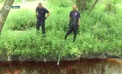 Grote olievervuiling op Simsebeek in Alken opgeruimd