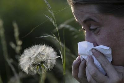 """Mensen met hooikoorts zullen nog een tijdje veel last hebben: """"Extreem veel pollen in de lucht"""""""