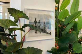 Fotograaf ontwikkelt surfbeelden voor toerismekantoor… met zeewier en zeewater