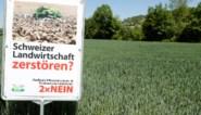 Zwitserland houdt referendum over kunstmatige bestrijdingsmiddelen