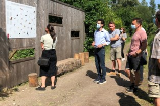 Stad zet ontwerpwedstrijd op poten voor verdere invulling rond vijvers van Bellefroid
