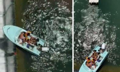 """Vriendinnen huren bootje, komen vast te zitten boven afgrond: """"Ze babbelden te veel"""""""
