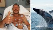 """Kreeftenvisser Michael (56) werd opgeslokt en weer uitgespuwd door walvis: """"Ik kon het niet geloven"""""""