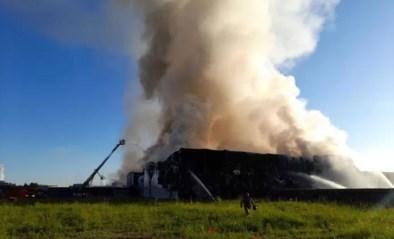 """Vuur verwoest vleesverwerkingsbedrijf bij Gentse haven: """"Houd ramen en deuren gesloten"""""""