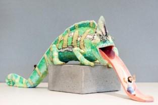 Nieuwe zoektocht rond kameleons in afwachting van installatie kunstwerk