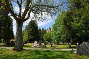 Stad vergroent en verstilt kerkhof Sint-Dimpna