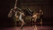 RECENSIE. 'Tryptich' van Peeping Tom: Als dansers als lijken uit de kast vallen ****