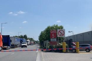 Dinsdag lege rekken varkensvlees mogelijk bij Delhaize na brand in vleesverwerkingsbedrijf
