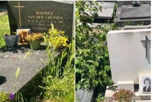 """Overwoekerde begraafplaats gevolg van personeelstekort: """"Hier heeft 'Maai mei niet' niets mee te maken"""""""