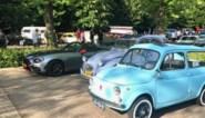 Van Japanse sportwagen tot oud kevertje: eerste 'Vintage Chroom Meeting' lokt 150 oldtimers