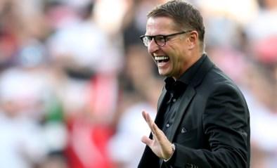 Vital Borkelmans niet langer bondscoach van Jordanië
