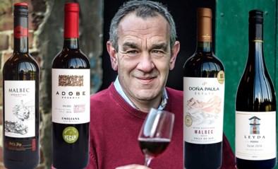 Mag het wat steviger zijn? Onze wijnkenner Alain Bloeykens selecteert vier robuustere wijnen