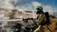 Brandweer Zuid-West Limburg zoekt vrijwilligers, vooral in Heusden-Zolder en Sint-Truiden
